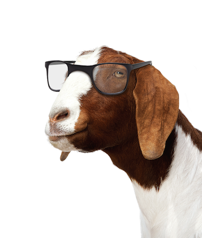 goat_glasses_rtl