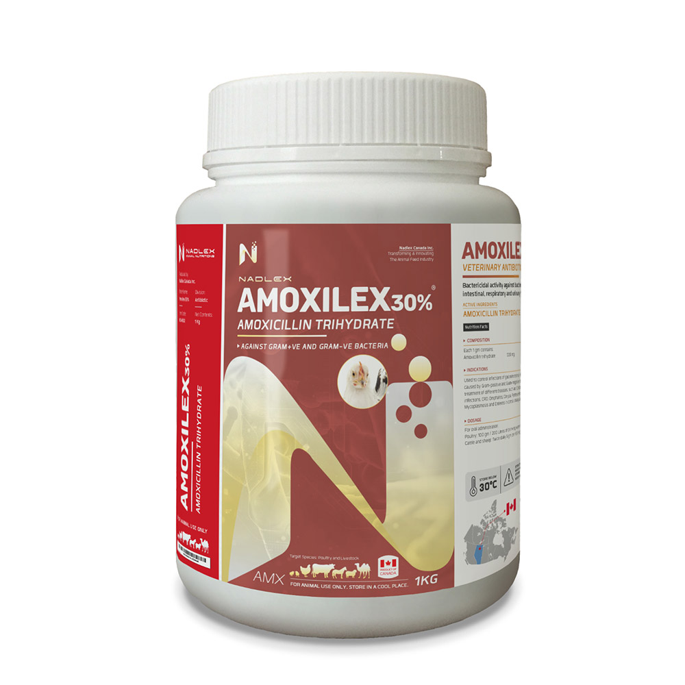 Amoxilex-30%