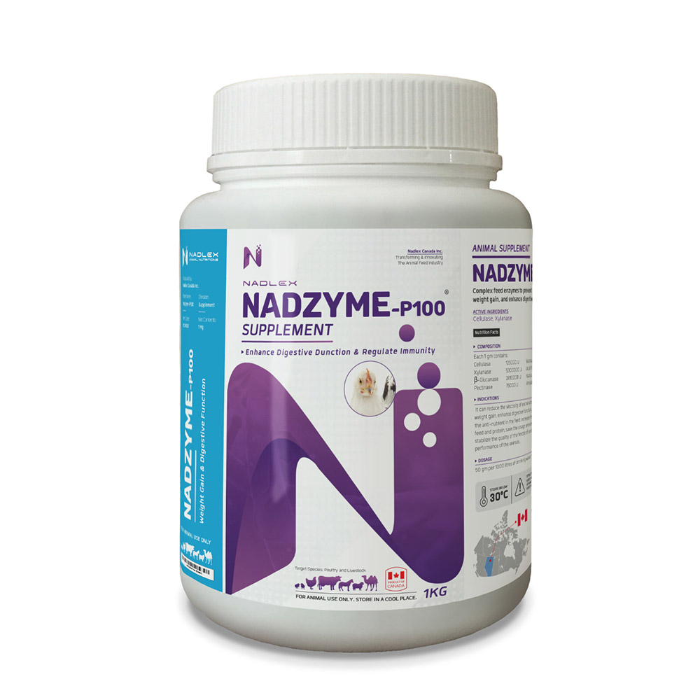 NADZYME-P100